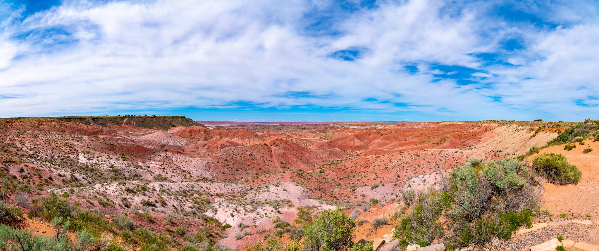 Petrified Forest Visitor Center Panorama