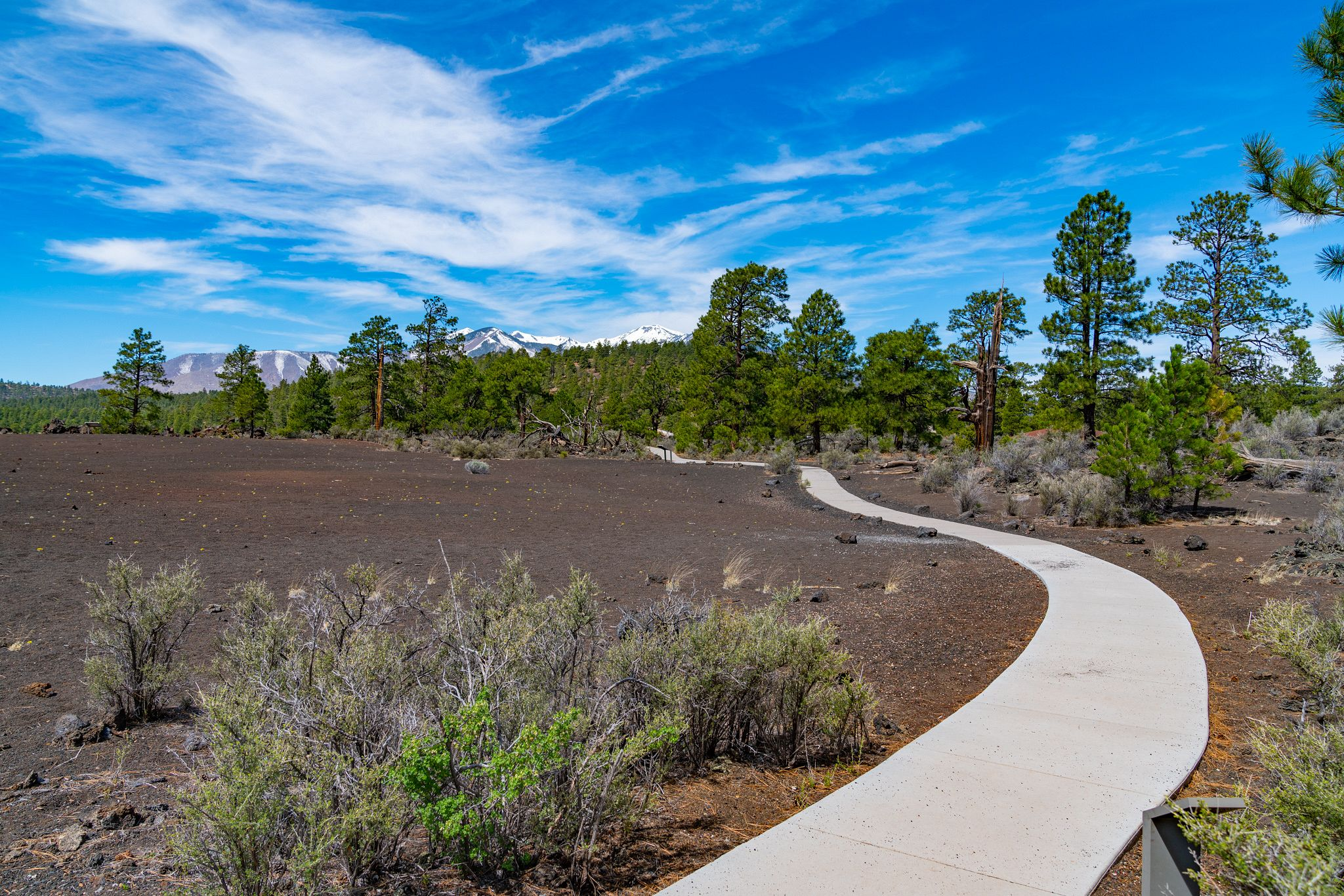 Sunset Crater Volcano Trail