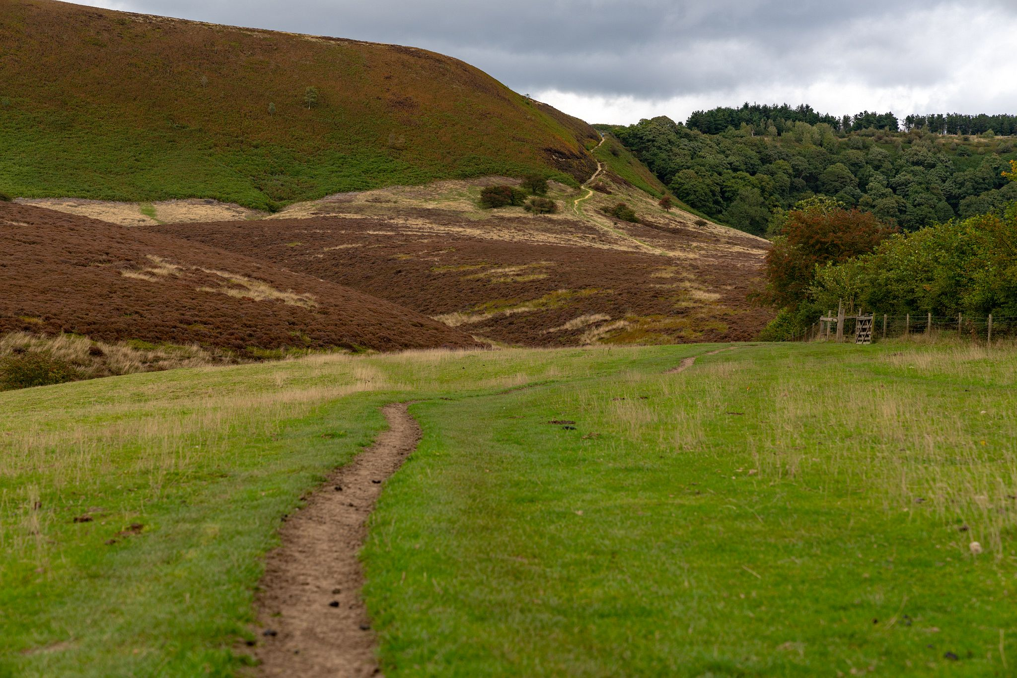 Climb out of the Hole of Horcum