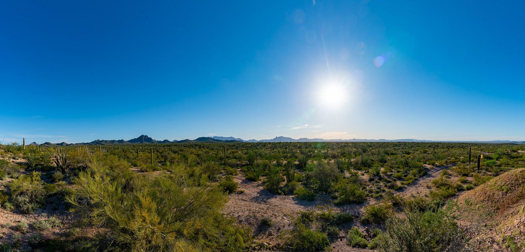 Sunrise over Organ Pipe Cactus National Monument