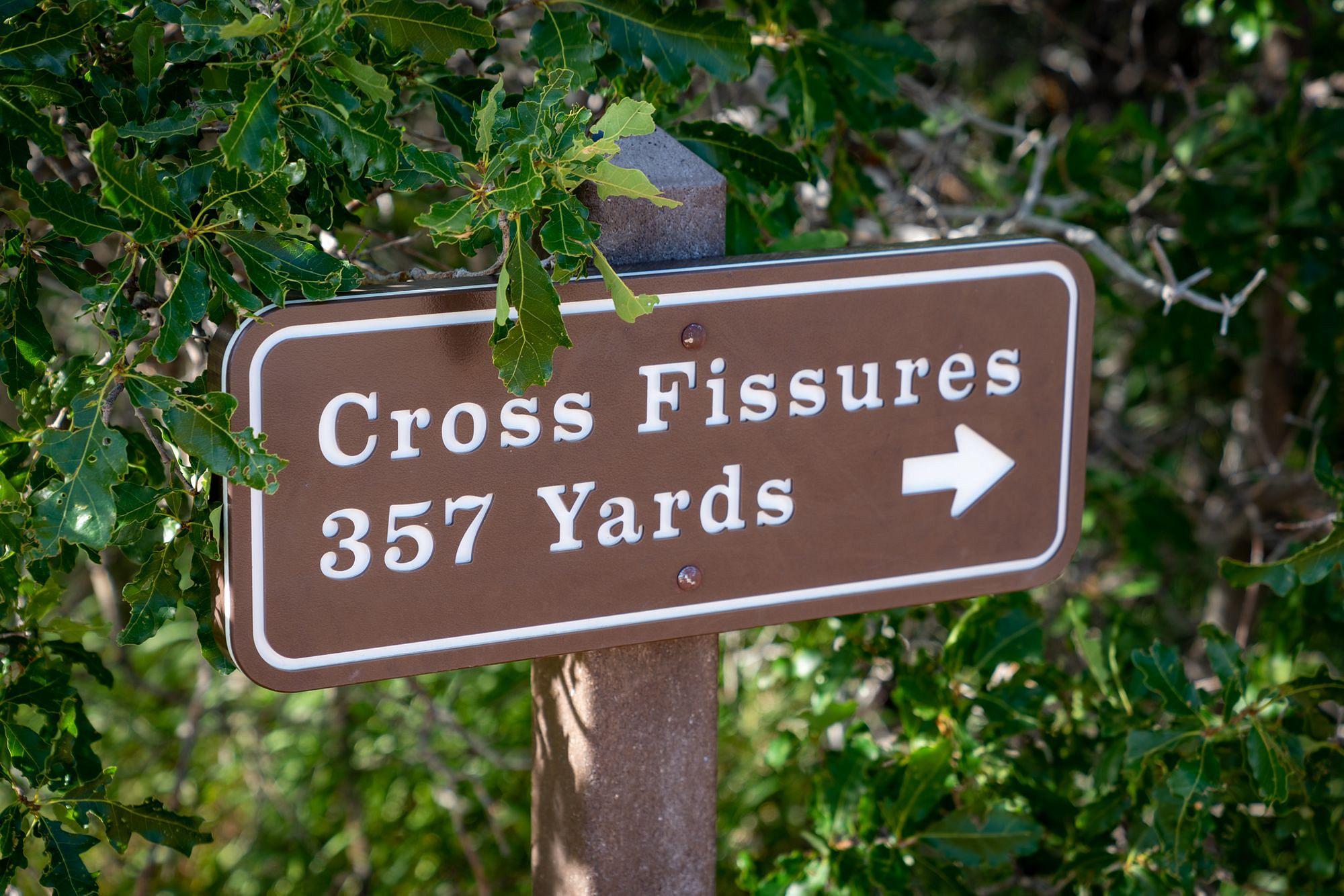 Cross Fissures