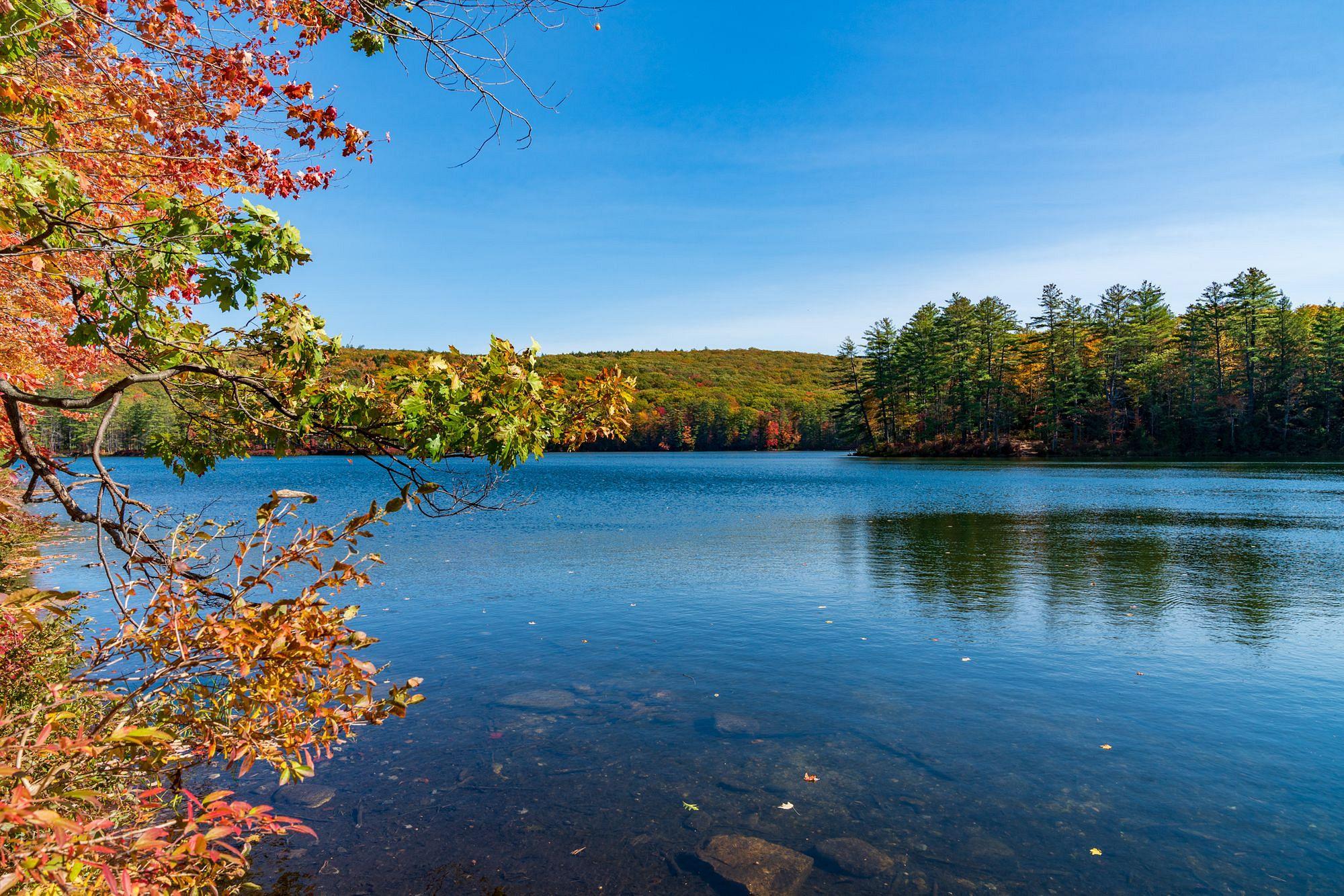 Goose Pond New Hampshire