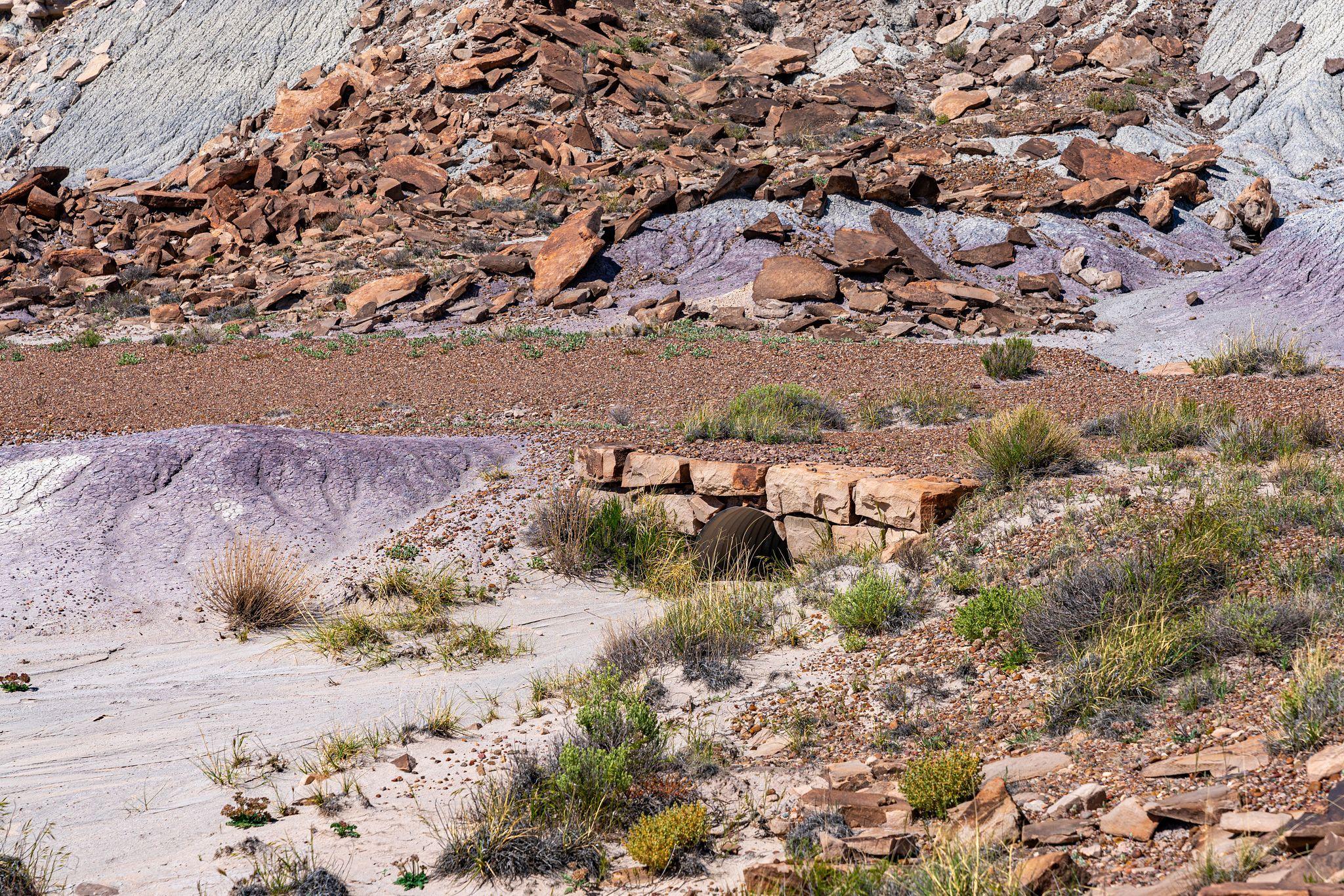 Japer Forest Stone Culverts