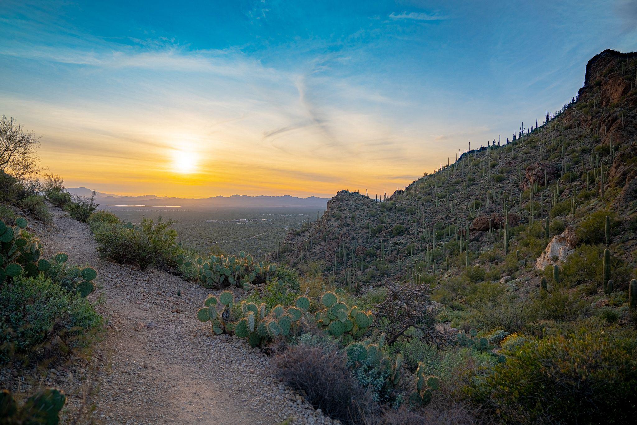Sunset at Gates Pass Trail
