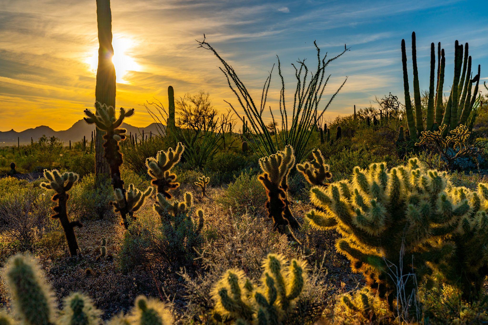 Sunrise on Victoria Mine Trail