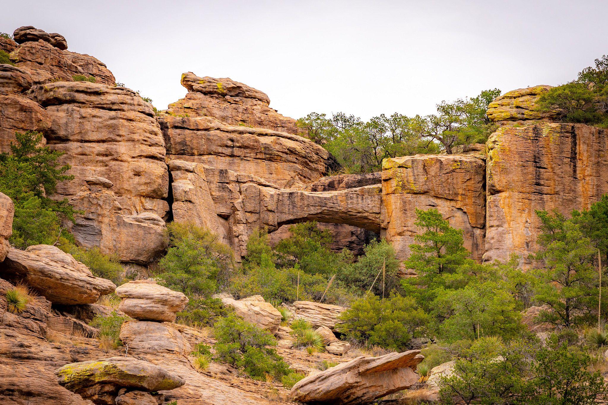 Natural Bridge, Chiricahua National Monument